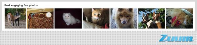 creating engaging facebook content - best photo, CMI