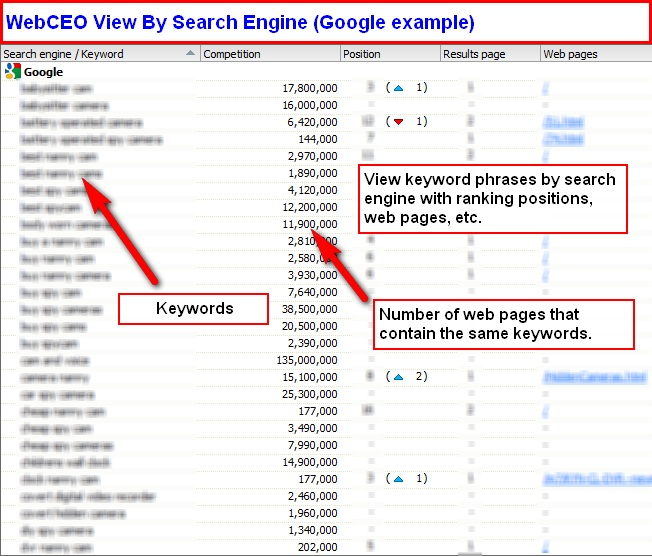 web ceo-view by search engine