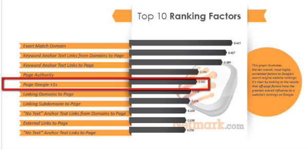 ranking factors-netmark.com