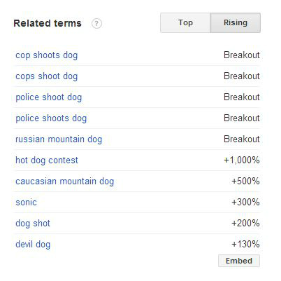 related terms search - dogs