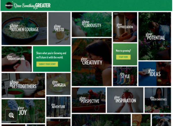 miracle-gro-greater-content