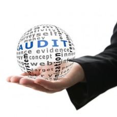 hand holding ball-audit