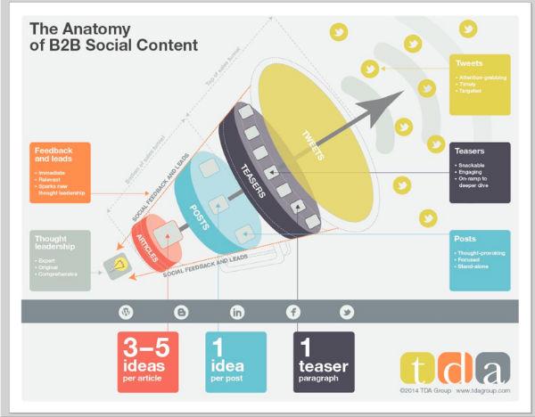 infographic-anatomy-b2b content
