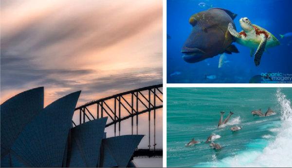 sydney opera house image-australia tourism