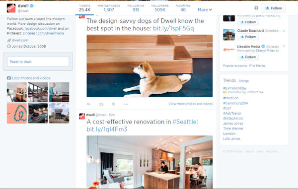 twitter example-dog-dwell