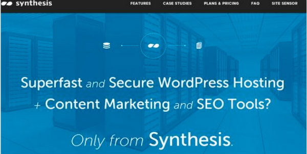 synthesis example-seo tools