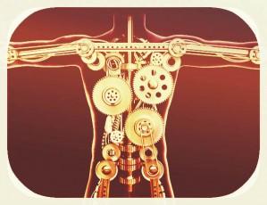 body-with gears inside