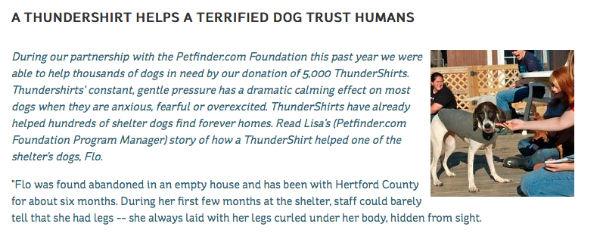 dog image-thundershirt