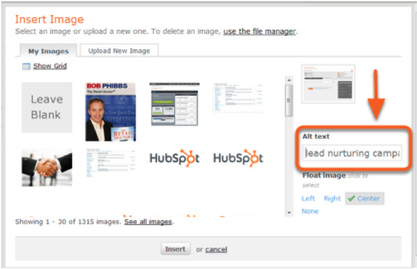 hubspot example-alt text