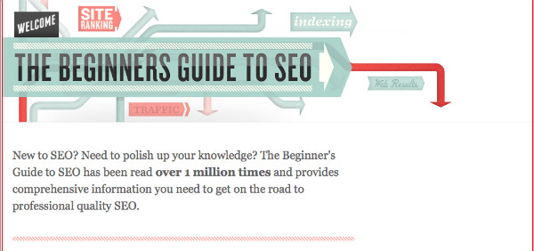 beginners guide seo-infographic example