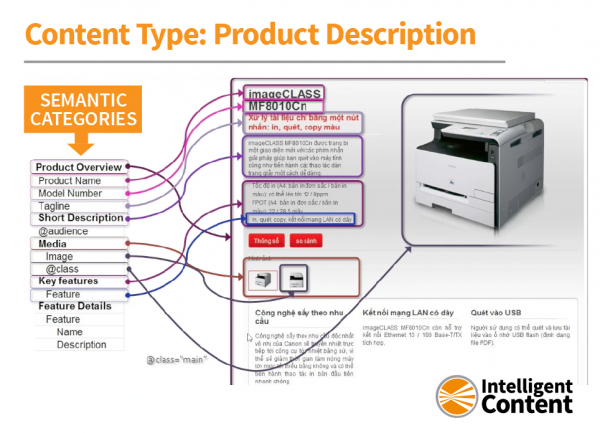 content-types-Noz-product-description