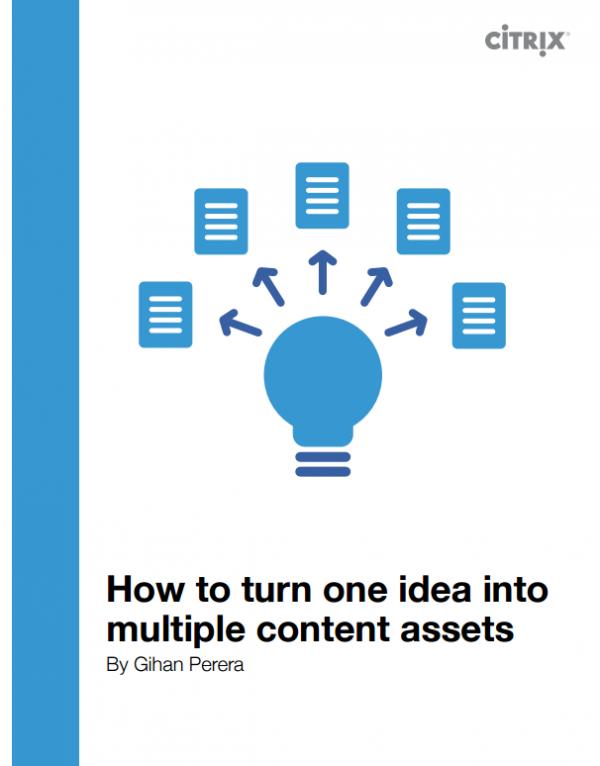 one_ides-multiple_assets_citrix