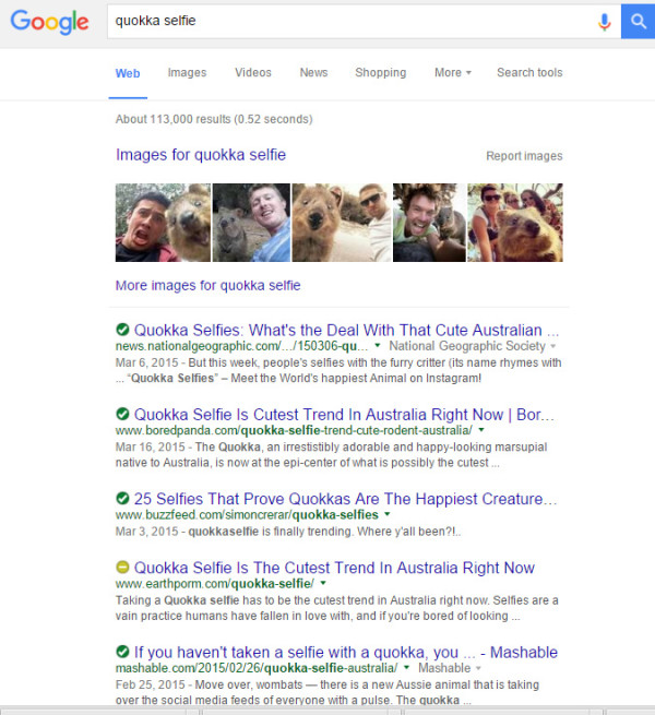 quokka-selfie-google v2