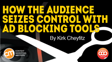 audience-seizes-control-ad-blocking-tools