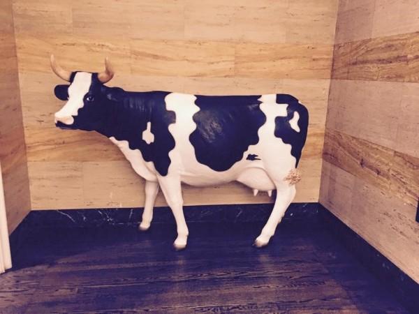 Denver-hotel-lobby-cow