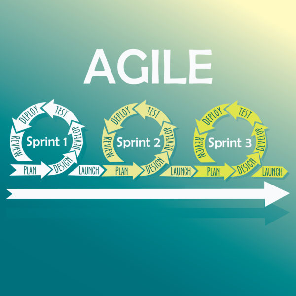 Why Agile Estimating and Planning is Necessary