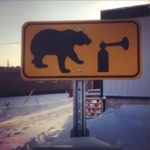 Beware of bears making announcements.