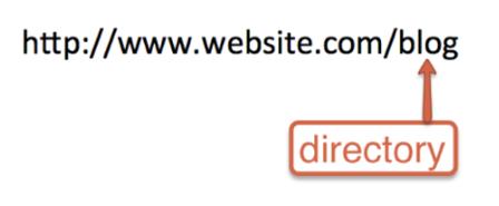 blog-root-website-example