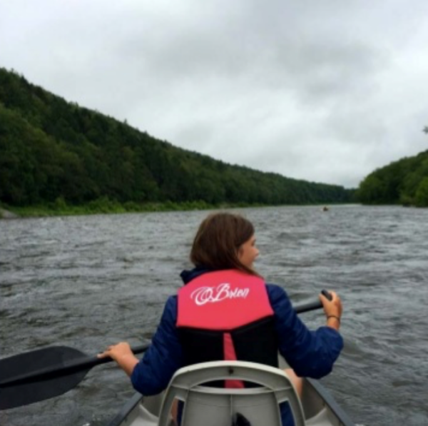 Paddling through the state forest, we spotted four bald eagles and one with a bad comb-over.