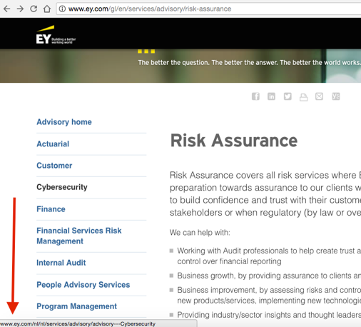 ernst-young-different-language-example