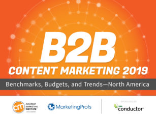 e1d2fe5b3a6b4 2019 B2B Content Marketing Research  It Pays to Put Audience First