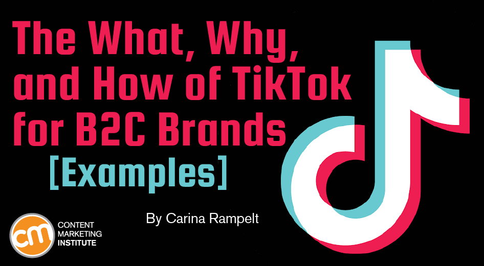 The What, Why, and How of TikTok for B2C Brands [Examples]