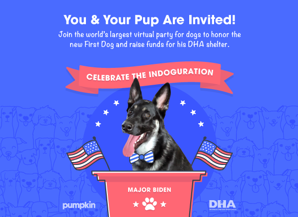"""A banner that reads """"Celebrate the Indoguration"""" with an image of a dog named Major Biden sitting at a podium."""
